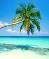 Islas de la Bahia